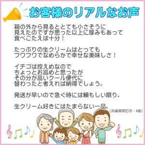 誕生日ケーキ プレート付リース生クリームケーキ5号バースデーケーキ b-c-c 04