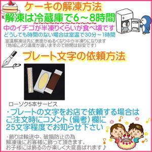 誕生日ケーキ プレート付リース生クリームケーキ5号バースデーケーキ b-c-c 05