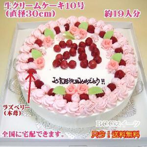 大きい誕生日ケーキNo,122/オーダーケーキ/パーティーケーキ/還暦祝いケーキ|b-c-c