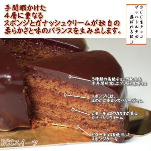 バレンタインデー BCC 生チョコザッハトルテ チョコレートケーキ5号 15cm(リボンデコ|b-c-c|04