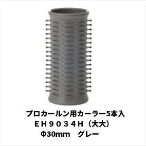 プロカールン用カーラー5本入 EH9034H(大大)Φ30mm グレー