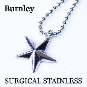 Burnley バーンリー サージカルステンレスリング スター ネックレス 316Lステン ペアネックレス シルバー 到着後レビューを書いて送料無料