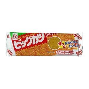 DM便 華道 ★すぐる ビッグカツ スペシャルソース味 5個★ ポイント 消化 300円