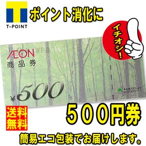 D 送料無料 美品 イオン 商品券 500円券 (金券 商品券 ポイント消化)