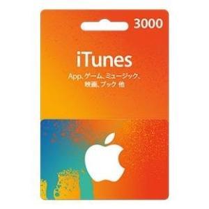 iTunesカード 3000円分 Apple プリペイドカードポイント消化に