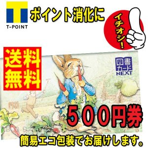 ネコポス発送 送料無料 美品 図書カード NEXT 500円 ギフト券 (金券 商品券 ポイント消化)|b-o-d2