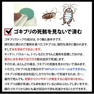【ゴキブリストップ1箱(薬剤12枚)】強力ゴキブリ退治 害虫駆除業者が使う本格的なゴキブリ駆除剤 屋外で死滅 約1年間持続 確実なゴキブリ対策 (03)|b-one-shop|04