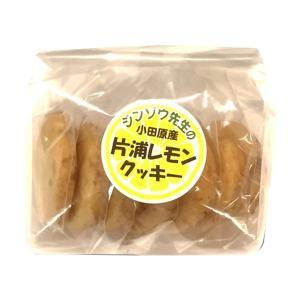 小田原片浦地区で大切に育てられたレモンを使ったクッキーです。 この商品は、でんぷん食のメーカーのオト...