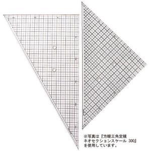 36cm方眼三角定規:ネオセクションスケール360(三角定規2枚組:36cm×45°、60°)【smtb-k】【w3】【デザイン文具】【事務用品】|b-town