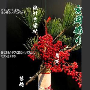 お正月飾玄関飾り和モダン金明竹|baba0878