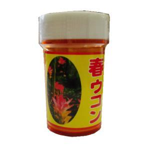 春ウコン 粉末100g 屋久島の健康食品|baba