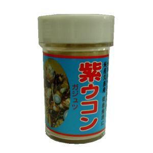 紫ウコン(ガジュツ) 粉末100g 屋久島の健康食品|baba