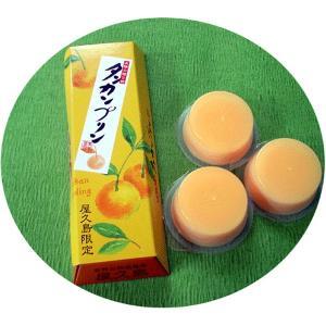 屋久島銘菓 タンカンプリン|babayaku