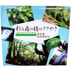 屋久島銘菓 彩る森の精のささやき アーモンドフロランタン 20枚入|babayaku
