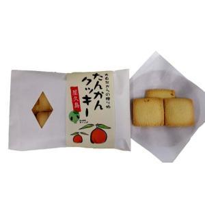 屋久島銘菓 屋久島たんかんクッキー babayaku
