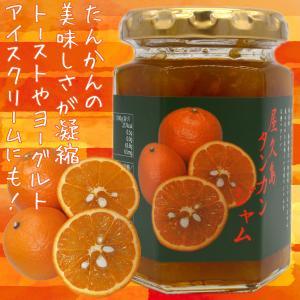 屋久島特産 手づくり たんかんジャム 150g|babayaku