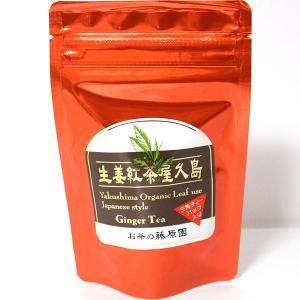 お茶の藤原園 紅茶生姜屋久島 三角ティーパック入り 30g(3g×10)|babayaku