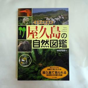屋久島の自然図鑑|babayaku