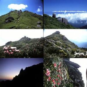 屋久島画像集5 屋久島の山 babayaku