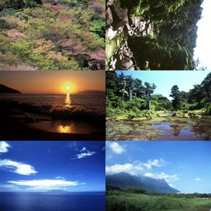 屋久島画像集10 屋久島の風景 babayaku