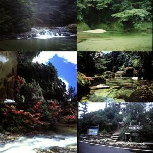 屋久島画像集12 淀川 babayaku