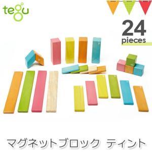 tegu(テグ)マグネットブロック ティント24P|木のおもちゃ 積み木 知育玩具 立体パズル|baby-smile