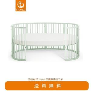 【STOKKEストッケ正規販売店】スリーピージュニアベッドキット(ミントグリーン) (スリーピーとマットレスは別売)|baby21proshop