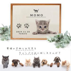 【送料無料】NEW  手形 足形 キット付 写真入 ( 猫用メモリアルキャンバス ) 仔猫 成長記録 メモリアル 誕生日  ねこ記念 ペット 仏具 オーダー 遺影 名前入|babychips2