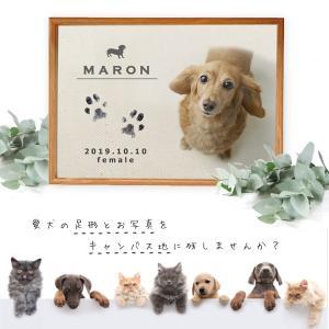 【送料無料】NEW  手形 足形 キット付 写真入 ( 犬用メモリアルキャンバス ) 仔犬 成長記録 メモリアル 誕生日 イヌ 記念 ペット 仏具 オーダー 遺影 名前入|babychips2