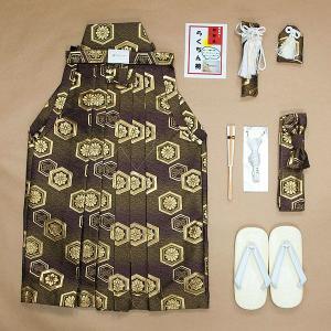 七五三 3〜7歳男の子用 男児簡単袴セット 上紋柄/ワイン茶系・亀甲の柄 WH2L|babytown