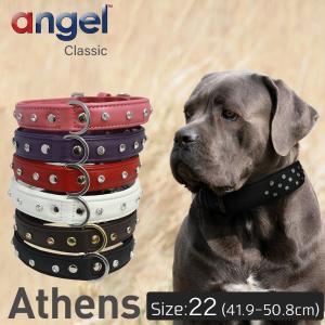 Athens 22インチ Angel 犬 首輪 本革 柔らかい ソフトレザー 小型 子犬 大型 中型 高級 おしゃれ かわいい イミテーションダイヤ|babywest