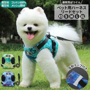 犬 リード ハーネス セット 通販 ハーネスリード 小型犬 可愛い 胴輪 犬用 中型犬 大型犬 ペット用品 いぬ おしゃれ 散歩 イヌ 丈夫 シンプル かわいい|BACKYARD FAMILY