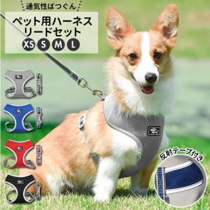 犬 リード ハーネス セット 通販 ハーネスリード 小型犬 可愛い 胴輪 犬用 中型犬 ペット用品 いぬ おしゃれ 散歩 反射 丈夫 シンプル かわいい お散歩|BACKYARD FAMILY