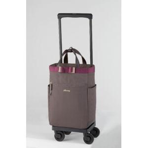 スワニー(SWANY)ルバンド 19リッター機内持ち込み: 可(国際線、国内線100席以上) グレージュ|bag-luggage-fujiya