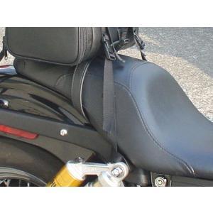 BAGG HD201 HDシートバッグ|bagg|05