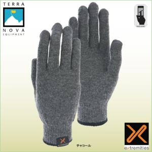 テラノバ 21PTG プリマロフトタッチグローブ TERRANOVA 防寒手袋 登山手袋 ウインターグローブ マウンテングローブ|bagpacks