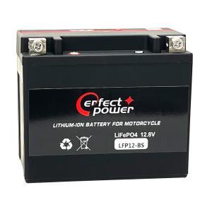 PERFECT POWER LFP12-BS リチウムイオンバッテリー  互換 ユアサ YTX12-BS FTX12-BS GTX12-BS 即利用可能フュージョン フォーサイト ゼファー|baikupatuhakase