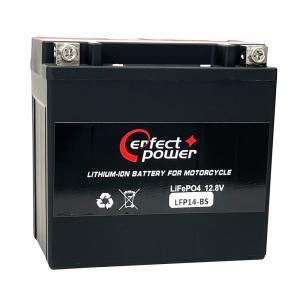 PERFECT POWER LFP14-BS リチウムイオンバッテリー 互換 ユアサYTX14-BS FTX14-BS GTX14-BS シャドウ NINJA ZX-12R スカイウェイブ650|baikupatuhakase