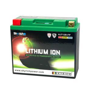 SKYRICH リチウムイオンバッテリー 【互換 ユアサ YT14B-BS YT14B-4 FT14B-4 GT14B-4】 ドラッグスター XJR1300|baikupatuhakase