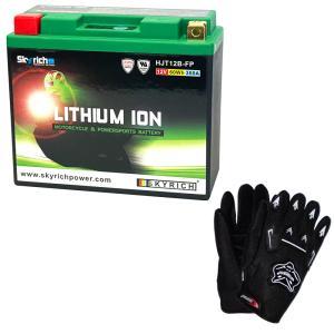 【グローブ付】 SKYRICH リチウムイオンバッテリー 【互換 ユアサ YT14B-BS YT14B-4 FT14B-4 GT14B-4】|baikupatuhakase
