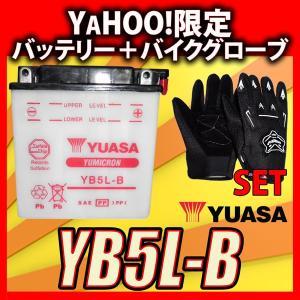 グローブ付! YUASAユアサ YB5L-B 互換 FB5L-B 12N5-3B GM5Z-3B RZ125 TZR125 TZR250 TDR250 R1-Z SRX400 baikupatuhakase