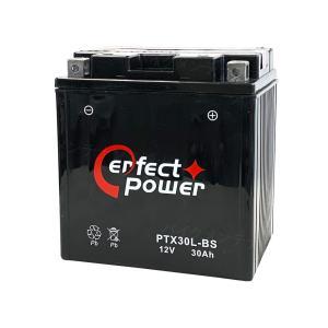 PERFECT POWER PTX30L-BS バイクバッテリー 【互換 YTX30L-BS YIX30L-BS STX30L-BS 66010-97A 66010-97B 66010-97C】ハーレー 水上バイク|baikupatuhakase