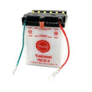YUASA ユアサ YB2.5L-C 開放型 バイクバッテリー 互換 FB2.5L-C GM2.5A-3C-2 NSR80 HC06 NSR50 AC10 MTX50 AD04 CRM50 AD10 CB125JX JC09|baikupatuhakase