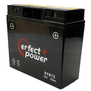 PERFECT POWER 51913  バイクバッテリー充電済 互換 YT19BL-BS BMW 51913  EXIDE-61212346800 即使用可能|baikupatuhakase