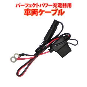 パーフェクトパワーフルオート充電器用 車両ケーブル SAE端子|baikupatuhakase