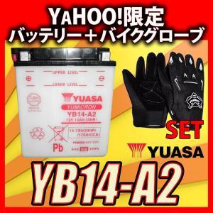 グローブ付! YUASA ユアサ YB14-A2 互換古河電池フルカワバッテリーFB14-A2 CB750 RC42 CBX750F RC17 XLV750R RD01 ナイトホーク RC39 VF750F RC15|baikupatuhakase