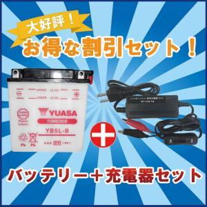 バッテリー&充電器セット! YUASAユアサ YB5L-B 互換 FB5L-B 12N5-3B GM5Z-3B RZ125 TZR125 TZR250 TDR250 R1-Z SRX400 baikupatuhakase