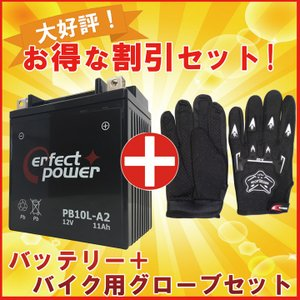 【グローブ付】 PERFECT POWER PB10L-A2...