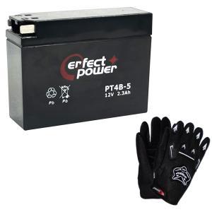 【グローブ付】 PERFECT POWER PT4B-5 バ...