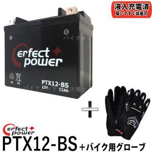 【グローブ付】 PERFECT POWER PTX12-BS...